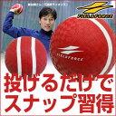 投球 送球練習用ボール スローイングマスター 投げるだけで理...