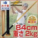 最大5000円引クーポン 素振り専用トレーニングバット(2kg/実打不可) 送料無料 打撃フォーム矯