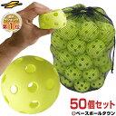 最大10%引クーポン 野球 練習 穴あきボール 50個セット 専用バッグ付き 軽い・柔らか