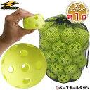 野球 練習 穴あきボール 50個セット 専用バッグ付き 軽い・柔らかい・飛ばない・割れにくい FBB-50 フィールドフォース