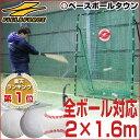最大5%OFFクーポン 野球 練習 ネット 硬式 軟式 ソフトボール対応 2m×1.6m ターゲッ
