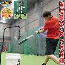 最大10%引クーポン 野球 練習 スウィングパートナー・バックスピン 硬式・軟式M号・J