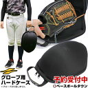 【3月下旬発送予定 予約販売】野球 グローブ用ハードケース グラブケア 保型 メンテナ