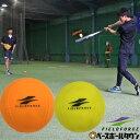 野球 練習 アイアンサンドボール 軟式M・J号サイズ 重さ約3倍 インパクトパワーボール少年 ジュニア 子供 子ども FIMP-681J FIMP-721M フィールドフォース トレーニング