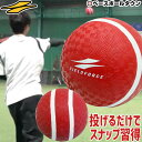 3240円で送料無料 野球 投球 送球練習用ボール スローイ...