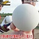 3240円で送料無料 野球 練習 トス専用ボール 軟式 12個入り FTBB-12 フィールドフォース