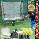 最大10%引クーポン 野球 練習 電池おまけ エンドレス打撃練習マシン トスマシン+専用ネット+穴あきボール6個セット 打撃 バッティング 6ヶ月保証付き FTM-263AR ラッピング不可 フィールドフォース