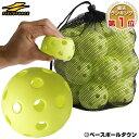 野球 練習 穴あきボール 20個セット 専用メッシュバッグ付き 軽い・やわらか・飛ばない・割れにくい FBB-20 フィールドフォース