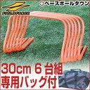 最大1000円引クーポン 野球 練習 ミニハードル Mサイズ...