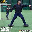 野球 練習 バランスボード 2枚セット バランスディス