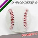 最大2千円オフクーポン スペアボール1個のみ ターゲットナイン専用ボール 1個売り FTRN-9SB フィールドフォース