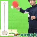 最大10%引クーポン 卓球 練習 トレーニング 室内 卓球用スウィングパートナー ピンポン BTKP-200 フィールドフォース