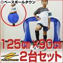 最大7%引クーポン 折りたたみサッカーゴール 2セット ミニサッカー・フットサル用 125cm×90cm ペグ・専用バッグ付き フットサルゴール ミニゴール FSG-125A フィールドフォース