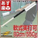 全品5%引クーポン 野球 練習 トレーニングバット 面で捉える板バット 80cm 550g アルミ製 実打可能 ミートポイント 打撃 バッティング 少年 ジュニア 子供 子ども ラッピング不可 FTBH-801 フィールドフォース