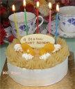 【モンブラン】魅惑のモンブラン 5号15cm(5切目安) ネームプレート付 誕生日ケーキ バースデーケーキに!【あす楽対応】【楽ギフ_名入れ】【Mont Blanc】