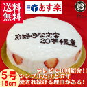 バースデーケーキ 誕生日ケーキ 5号 名入れ 大阪ヨーグルトケーキ / 15cm フルーツケーキ 大 ...