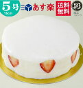 ノーマル 大阪ヨーグルトケーキ 5号 /15cm 【このケー...