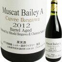 ジャパンワインチャレンジ 2011銅賞受賞(2009年)