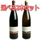 Pfalzer Traubensaft ファルツァー トラウベンザフト 赤・白 ノンアルコールワイン (
