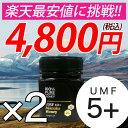 マヌカハニー UMF5+ 250g 2個セット ハニーバレー...