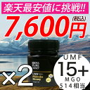 マヌカハニー UMF15+ 2個セット 250g ハニーバレ...