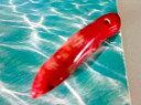珊瑚ペンダントトップ 赤珊瑚ペンダントトップ-71 天然石ペンダントトップ 枝珊瑚 珊瑚ネックレス制作用 珊瑚アクセサリー制作用 珊瑚ビーズ 珊瑚パーツ