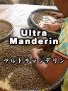 【送料無料】ウルトラ・マンデリン(1Kg)