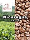 【今月のサービス豆】ニカラグア・マラゴジーペ(200g)