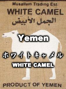ホワイト・キャメル