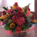 誕生日 結婚記念日 お見舞い 開店 ビジネス 開業 改築 新築 お祝い など季節のお花を使ったアレンジメント !! Harvest/ハーベスト (トラッドレッド) 画像サービス 画像配信