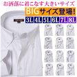 ワイシャツ 大きいサイズ 3l 4l 5l 6l yシャツ 白 長袖 カッターシャツ ドレスシャツ ドゥエボットーニ ボタンダウン 結婚式 ビジネス メンズ シャツ 白 ビッグサイズ 制服 おしゃれ 人気 XXXL