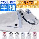 半袖 Yシャツ 大きいサイズ 3L 4L 5L 6L ボタンダウン おしゃれ 白 結婚式 ワイシャツ ドレスシャツ ドゥエボットーニ カッターシャツ ビジネスシャツ メンズ 長袖ワイシャツ 大きい ビッグ サイズ 白シャツ