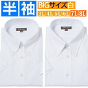 ワイシャツ 半袖 大きいサイズ 半袖 yシャツ 3l 4l ...
