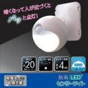 防雨LEDセンサーライトASL-3302 【LEDライト 照明 防犯対策】