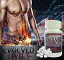 送料無料!!従来製品を凌駕するLevel5の実力P27Mar15【エボルヴ レベルファイブ】男性サポートサプリメント