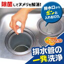 【BSP】排水管の一発洗浄 20錠入