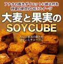 【大麦と果実のソイキューブ】食物繊維 ドライフルーツ チョコ...