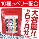 【ベリーベリー 108g(300mg×360粒)】ブルベリー サプリメント 視力 美肌 アントシアニン ビタミンA ポリフェノール 健康 大容量