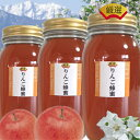 SSS生はちみつ国産非加熱ビーイング1000gx3本【信州安曇野産100%無農薬りんご畑の生はちみつ】花粉たっぷり生蜂蜜国産 非加熱 活酵素売り切れ御免林檎の風味りんご蜂蜜