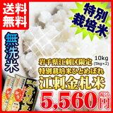 【】江刺金札米(えさしきんさつまい)【無洗米】10kg【smtb-MS】【kyupon】05P10Apr13