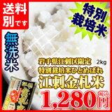 【無洗米】【岩手県産】「特A」常連のお米江刺金札米「うまい米!無洗」(R)2kg×1個ギフトにもおすすめ