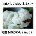 一般の白米より栄養ぎっしり「米の力」 無洗米 2kg 送料無料 九州産 米 2キロ×2個セット 送料込み