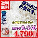 平成27年熊本県産無洗米「もち米」5kg×2個セット 九州産 米 無洗米 5kg 送料無料 準備楽々