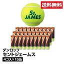 送料無料 テニス ボール 硬式 DUNLOP ダンロップ セントジェームス 4コ入り×15缶_4907