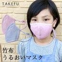 【送料無料】子供用マスク TAKEFU 竹布 キッズマスク ...