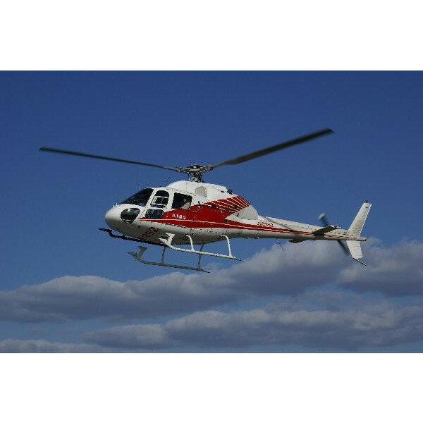 ヘリコプタークルージング体験 体験ギフト 【送...の紹介画像2