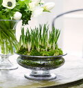 花瓶 フラワーベース ホルムガードオールドイングリッシュ フワラーボウル (M) φ 19cmOLD ENGLISH Flower bowl 4343800ガラス 花器 トレー北欧 インテリア 雑貨 デンマーク ギフト プレゼント 結婚祝 内祝 無料ラッピング