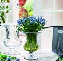 花瓶 フラワーベース ホルムガードオールドイングリッシュ ベース (M) 19cmOLD ENGLISH Vse 4343802吹きガラス ガラス 花器 トレー北欧 インテリア 雑貨 デンマーク ギフト プレゼント