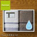 (一秒タオル)HOTMAN ホットマン フェイスタオル2枚セット(HMTT0004n)(お祝い お返...