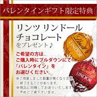 17バレンタインギフト限定特典